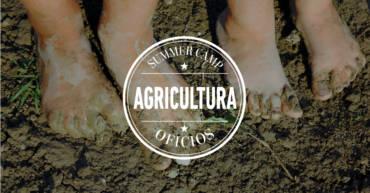Campamento de verano | AGRICULTURA